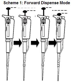 Forward Pipetting explained