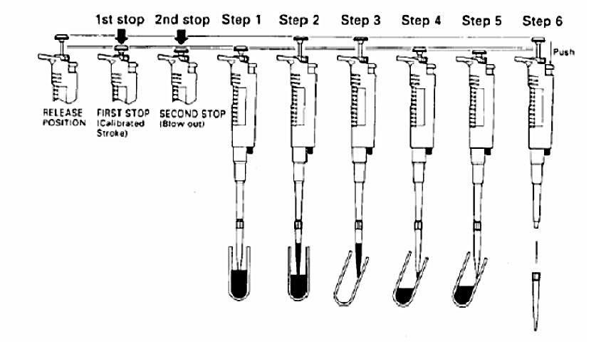 Transferring volume of a liquid complete diagram